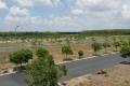 Đất nền ngay trung tâm Nhơn Trạch, Liền kề quận 2, chỉ 535 Triệu/ nền. TT24 Tháng 0 LS.