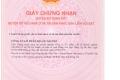 Bán căn hộ Samland Giai Việt - giá chiết khấu khủng - gym, hồ bơi, siêu thị Hotline 0916 802 812