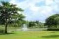 Cho thuê căn hộ cao cấp celadon city , 79m2 – 3pn – 2wc full noi that, giá 15tr/tháng