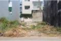 Đầu tư sinh lời tại khu đất Nguyễn Xiển, phường Trường Thạnh, q9