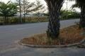 Nhượng gấp nền Đất phố Thương mại KDC sinh thái Bình Chánh, đường Trần Văn Giau, giá siêu tốt