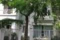 Cho thuê biệt thự ngay trung tâm Phú Mỹ Hưng, nhà đẹp, giá rẻ. LH: 0909.495.001 (Mai Thùy)