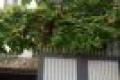 Chính chủ cần cho thuê lại biệt thự đường Thủy Lợi, diện tích rộng, đầy đủ nội thất, giá: 37tr/tháng, LH: 0906.606.182(Zalo)