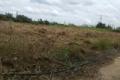 hót! bán nhanh đất thổ vườn 20x50m hẻm 6m sổ hồng riêng chỉ 5tr5/m