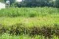 chính chủ cần bán gấp lô đất thổ cư mặt tiền sổ hồng riêng gần khu công nghiệp Trảng Bàng Tây Ninh