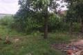 chính chủ cần bán gấp lô đất giá rẻ mặt tiền gần trung tâm Trảng Bàng Tây Ninh