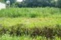 cần bán gấp lô đất thổ cư mặt tiền gần khu công nghiệp Trảng Bàng Tây Ninh chính chủ