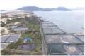 Sở hữu ngay đất Đặc khu kinh tế Vịnh Bắc Vân Phong - Khánh Hòa. Giá 2800000/m2
