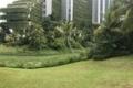 Forest city-TP xanh 100% tại Singapore. sở hữu vĩnh viễn căn hội chỉ từ 3.5 tỷ VNĐ. 0937283933
