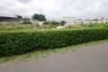 Lô đất thổ cư shr ngay khu biệt thự đường lê thị riêng ,q12
