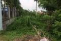 Cần tiền bán lô đất 5*16m ở ngay KCN Thuận đạo, 500tr,shr