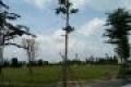 Đất nền dự án Five Star Eco, Đinh Đức Thiện, Bình Chánh, lh 0975236458