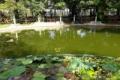 Bán đất khuôn viên rộng,vị trí đẹp huyện Đức Trọng tỉnh Lâm Đồng.