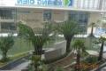 Bán nhanh căn hộ D.02 dự án Jamila Khang Điền 2.25 tỉ bao sang tên công chứng
