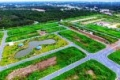 Sang nhượng nền đất E4-44 đã có sổ dự án Saigon Village