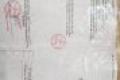 6p trọ+1kiot 124m2 gần chợ vị hảo thái hòa tân uyên bình dương 0967995179 & 01208798534