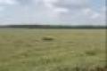 Bán đất trang trại tây ninh giá rẻ