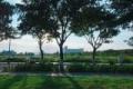 Tiểu khu biệt thự elysia, vẽ đẹp khó cưỡng bên bờ sông Hàn. Gía giật mình