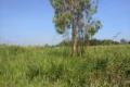hót! bán nhanh đất thổ vườn 26x33m hẻm 6m sổ hồng riêng chỉ 5tr2/m đan xen kdc tại nhơn đức
