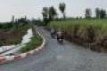 Kẹt tiền sài Tết cần bán gấp 500 m2 đất vườn Bến Lức - 0909 710 558