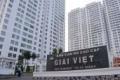 cần cho thuê căn hộ cao cấp tạ quang bửu phường 5 quận 8