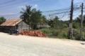 Bán đất mặt tiền đường 816, xã Thạnh Hòa, huyện Bến Lức, Long An