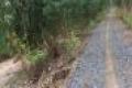 Bán 10.000m2 đất vườn khu C xã Thạnh Lợi, 2 mặt tiền đê lớn. Giá 1,2 tỷ