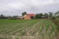 đất vườn gần khu công nghiệp junsun chính chủ cần bán gấp