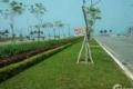 Bán nhanh lô đất 2 mặt tiền trục Hoàng Thị Loan, Nguyễn Sinh Sắc, giá rẻ hơn thị trường.