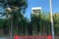 Bán nền Khu Cán Bộ ĐHCT đường Nguyễn Văn Linh, phường An Khánh, quận Ninh Kiều
