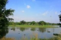 Đất Biệt thự sát Sông 240m2, gần công viên, TP Biên Hòa, 12tr/m2