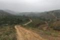 cần chuyển nhựng 26 ha đất trồng cây lâu tại huyện lương sơn tỉnh hòa bình
