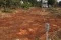 Bán gấp lô đất mặt tiền đường Cây Bài, xã Phước Vĩnh An, huyện Củ Chi. 120m2 giá 550 triệu. SHR