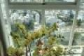 Belleza 105m2: 3pn + 2wc, có nội thất view sông Đông Nam nhìn Phạm Hữu Lầu 2.250tỷ 0931442346 Phương