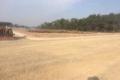 Cần bán đất mặt tiền Sông Xoài,Vũng Tàu.thổ cư.3tr/m2