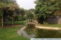 Cho thuê villa Thảo Điền sân vườn rộng 1000m2 phù hợp làm nhà hàng, trường học