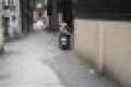 Nhà hiếm phân lô Nguyễn Khang, Kinh doanh đỉnh, Ô tô đỗ cửa, Nở hậu