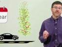 Vietsub: Top xe cũ đáng tin cậy nên mua