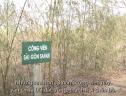 13 năm 'treo' của dự án Sài Gòn Safari 500 triệu USD
