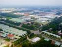 Dự án Biên Hòa Golden Town