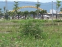 """Đất """"vàng"""" hàng trăm tỉ ven sông Hàn nhưng… không có điện"""