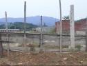 Sau 11 năm đi vào hoạt động, KCN Đại Kim gần như bị bỏ hoang