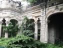 Cây dại bao trùm biệt thự gần 100 tuổi bỏ hoang ở Sài Gòn