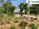 Đất nền Sky Center City II tỉnh Bình Phước