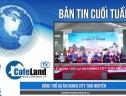 Bản tin dự án tuần 1 tháng 8: Khởi động dự án lấn biển khu đô thị Phú Cường Hoàng Gia