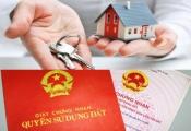 Cảnh báo chiêu lừa tráo sổ đỏ khi xem giấy tờ mua nhà