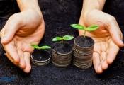 Ưu đãi đầu tư vào lĩnh vực nông nghiệp
