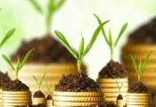 5 nguyên tắc cơ bản nhà đầu tư phải biết để đầu tư thành công