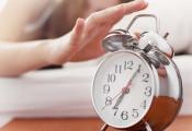 Không cần dậy sớm vẫn có thể giàu