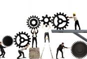Mô hình tổ chức nhóm: Khi ai cũng là chuyên gia